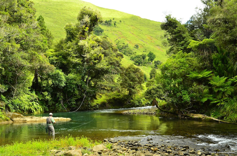 Pesca de Lujo – Nueva Zelanda