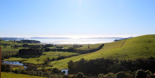 Why Kauri Bay Boomrock should be on your Auckland corporate venues short-list