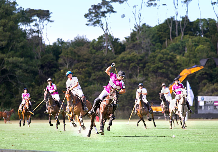 The Hottest Events of the New Zealand Polo Scene